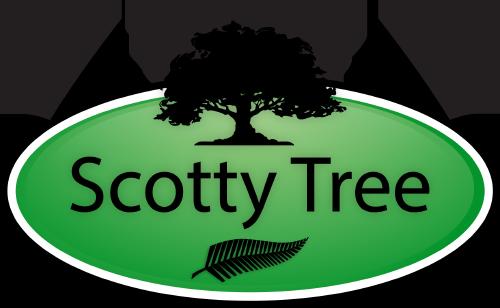 Scotty Tree - Tree Care Services